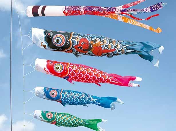Carp flag festival culture